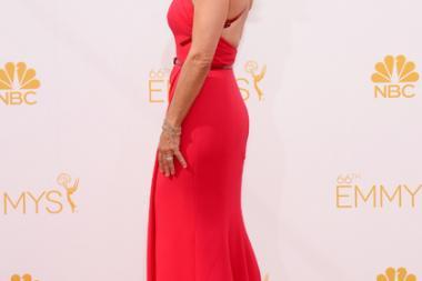 Julia Louis-Dreyfus of Veep arrives at the 66th Emmy Awards.