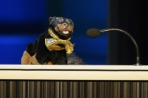 Triumph, the Insult Comic Dog at the 65th Creative Arts Emmys