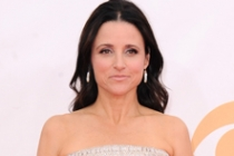 Julia Louis-Dreyfus on the Red Carpet at the 65th Emmys