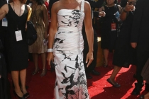 Ugly Betty co-star Vanessa Williams at the 60th Primetime Emmy Awards